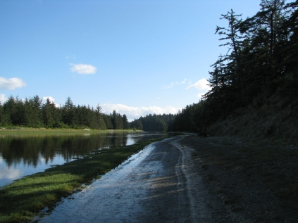 Walk back along the Tlell River